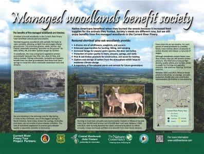 Stop 4. societal benefits of managed shortleaf pine-oak woodlands